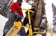 Snowbike Workshop - Gosau
