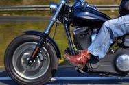 Harley Davidson Cruising