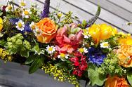 Zauberhafter Blumengruß